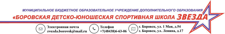 """Боровская ДЮСШ """"ЗВЕЗДА"""""""