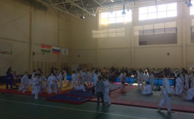 Открыты турнир Боровского района по дзюдо