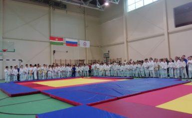 Первенство Боровского района по дзюдо