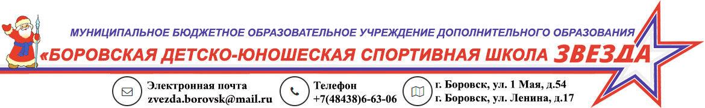 """Боровская СШ """"ЗВЕЗДА"""""""