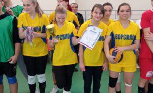 Соревнования по волейболу во 2 группе