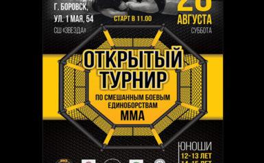 Кубок Боровского района по смешанным единоборствам (ММА)